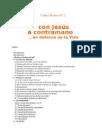 Mesters, Carlos - Con Jesus a Contramano