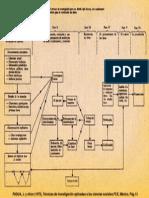 Diagrama Survey Padua
