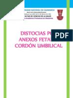seminario de anexos fetalesdocx.docx
