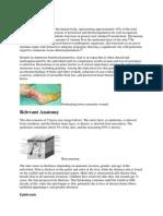 Overview Skingraft Translate