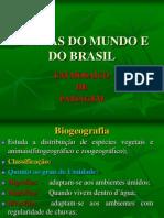 biomasdomundoedobrasil-110511192350-phpapp02