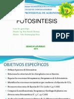 fotosintesis2013-II UTEA.ppt