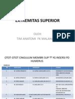Anatomi Extremitas Superior (2)