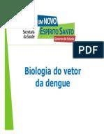 Biologia Vetor Palestra