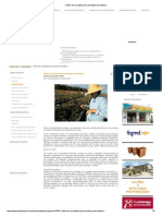 Cultivo de eucalipto para produção de madeira