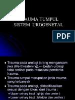 Trauma Tumpul Sistem Urogenital Klh