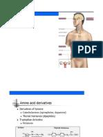 Gambar Hormon