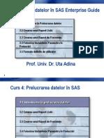 5 Prelucrarea Datelor SAS EG
