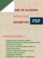 Probleme de Algebra Rezolvate Geometric