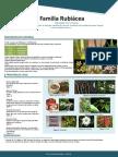 Poster Flora PDF