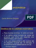 Cinetica y Bioenergia-Agro