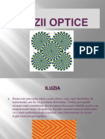 Iluzii Optice (prezentare)