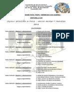 Programa Tropa 2013 II Ciclo