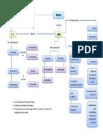 Mapa Conceptual SNB