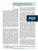 Productividad de los Sistemas Orgánicos y Convencionales de Producción de Cultivos