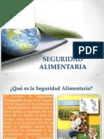 Seguridad Alimentaria.pptx