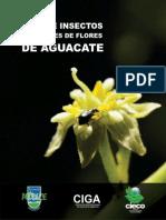 Guia de Polinizadores y visitantes de flores del aguacatero.pdf