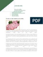 Beneficios de La Carne de Cerdo