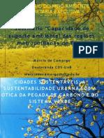 GT CapacidadeSuporte MarciaCamargo