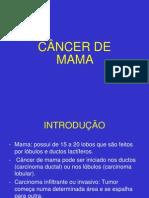 slidescancerdemama-2