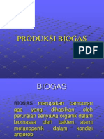 Bio Gas Indonesia