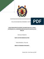 caracterizacion de pacientes con neoplasia en la clinica veterinaria de la universidad michoacana de san nicolas de hidalgo.pdf