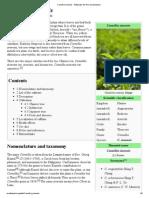 Camellia Sinensis - Wikipedia, The Free Encyclopedia