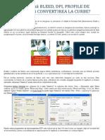 Dictionar Print