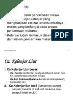 Tumor Parotis.pdf