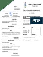 Portobello Affida Comandante Maggiore Croce Incarico Affidamento a Ditte Esterne Sanzioni 2009 Delibera g.m. n.45