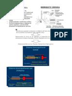 Fisiopatología Respiratorio2