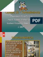 termodinamicaMc