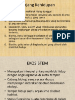 Eko Sistem biologi