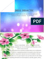 Cadrul Didactic Ppt