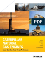 Dual Fuel Brochure CAT (LEBE0030).pdf