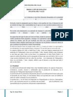 Pro.durazno Plan 2 (1)
