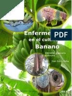 Portada de Enfermedades de Banana