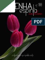 Resenha Espirita on Line 100