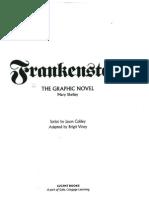 Frankenstein - The Graphic Novel