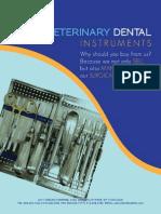 Veterinary Dental Flyer