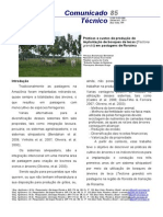 Práticas e custos de produção de implantação de bosques de tecas (Tectona grandis) em pastagens de Roraima