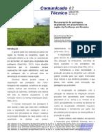 Recuperação de pastagens degradadas em propriedade na região da Confiança em Roraima