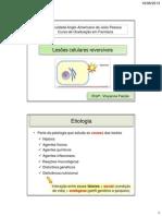3. Lesões celulares reversiveis e irreversíveis