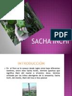 Sacha Inchi 12