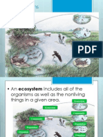 Ecology - Ecosystems and Energy