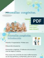 35676965-Anomalias-congenitas (1)