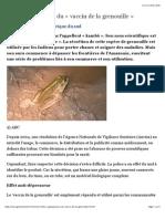 Les superpouvoirs du « vaccin de la grenouille ».pdf