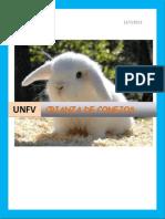 Criadero de Conejos