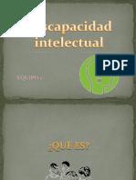 Discapacidad Intelectual Expo