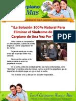 reporte_tunel_carpiano.pdf